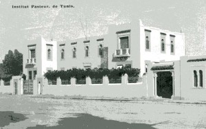 institut-pasteur-a-tunis